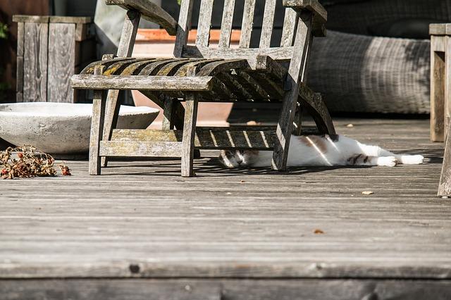 職場が真夏日にエアコン壊れると(特に)発達障害者は命に関わるよねってお話